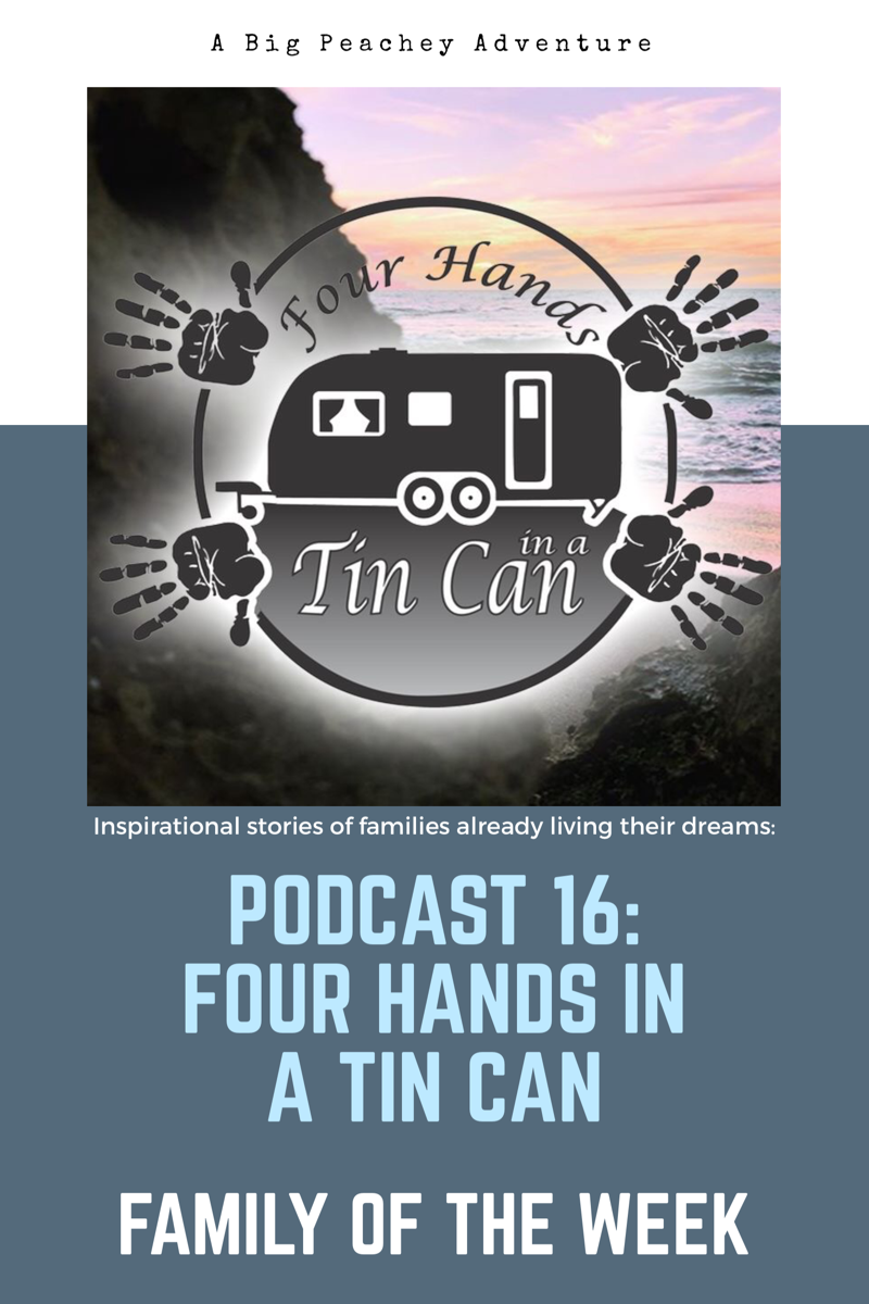 Four Hands in a Tin Can (Family of the Week)