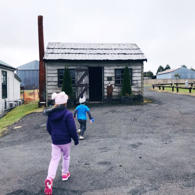 Top 5 low cost camp Tasmania - Waratah