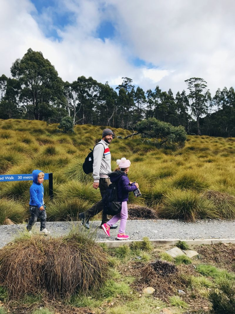 Why you should add Waratah to your Tassie itinerary