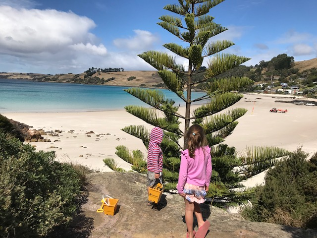 Best free camp spots Tasmania - Boat Harbour
