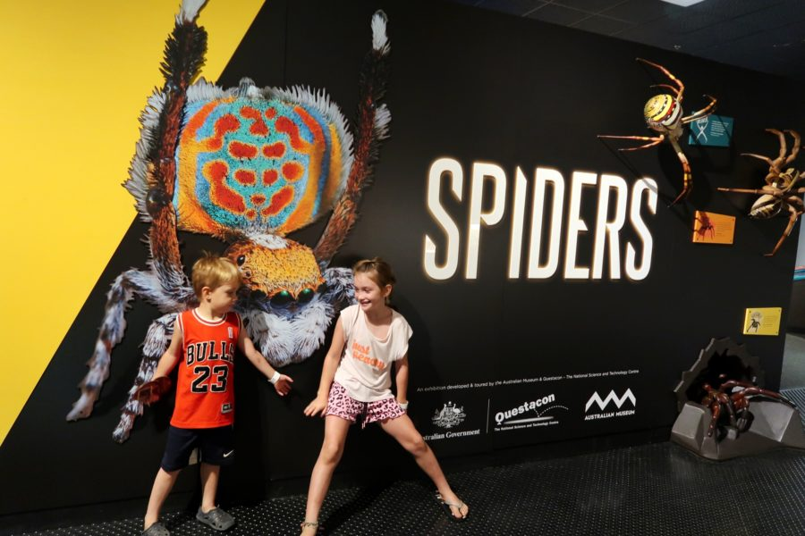 'Spiders'! The perfect wet weather indoor activity in Darwin with kids.