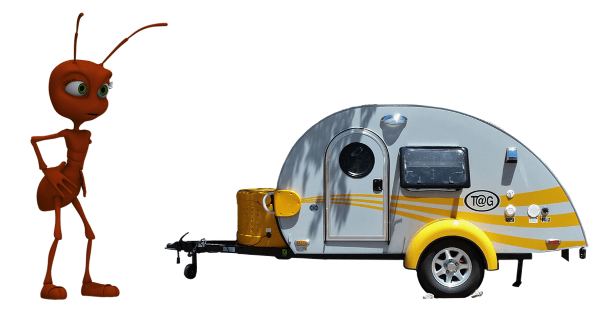 13 Tips To Stop Ants Getting Into Your Caravan