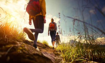 Walking Australia: The 4 Best Hiking Destinations in NSW